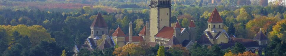 Eine interessante sächsische Metropole